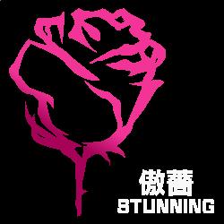 Stunning Logo